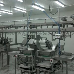 Линия убоя кроликов производительностью 3000 голов в час