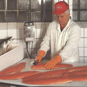 Оборудование для нарезки и филетирования рыбы