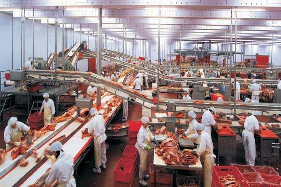 Требования для мясоперерабатывающих цехов