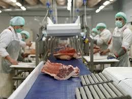 управление мясоперерабатывающим производством